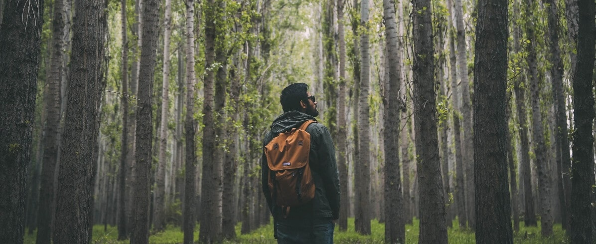 How To Choose A Hiking Backpack featured